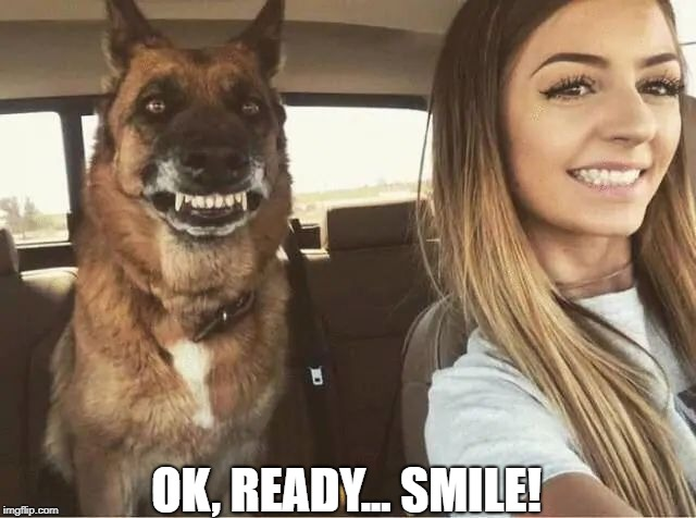 Twins | OK, READY... SMILE! | image tagged in memes | made w/ Imgflip meme maker