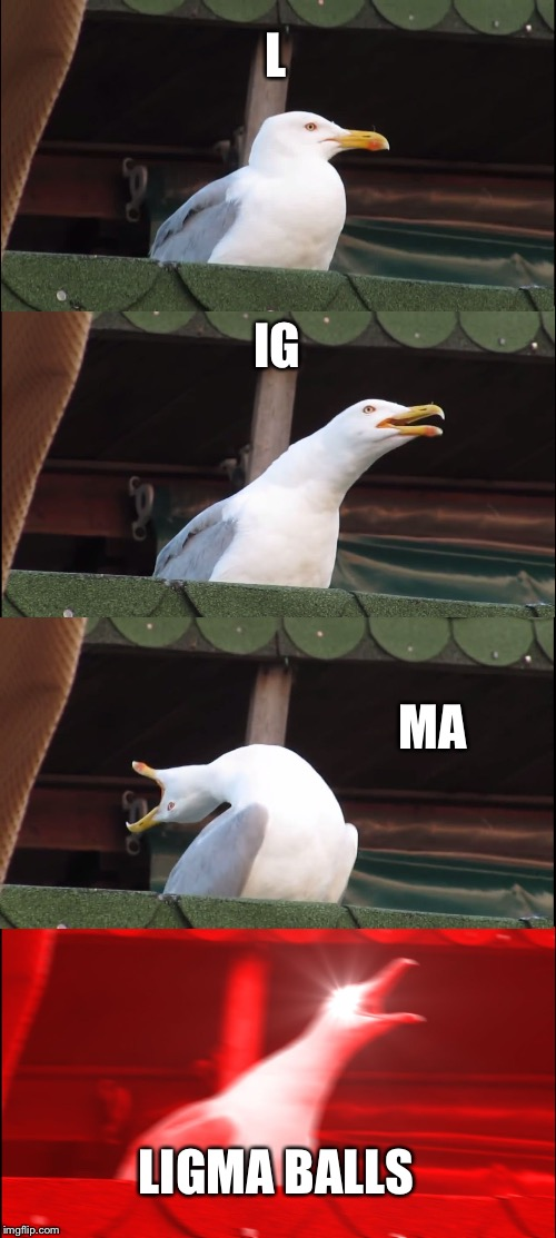 Inhaling Seagull Meme | L IG MA LIGMA BALLS | image tagged in memes,inhaling seagull | made w/ Imgflip meme maker