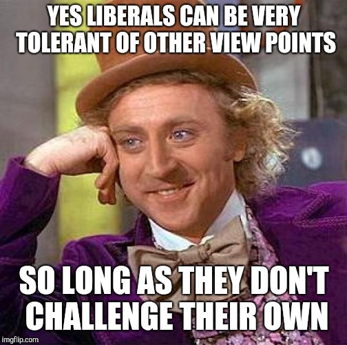 Creepy Condescending Wonka Meme | YES LIBERALS CAN BE VERY TOLERANT OF OTHER VIEW POINTS SO LONG AS THEY DON'T CHALLENGE THEIR OWN | image tagged in memes,creepy condescending wonka | made w/ Imgflip meme maker