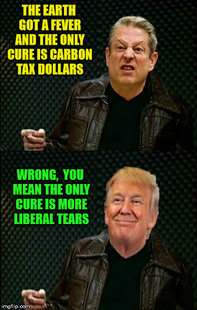 Earth Got a Fever | THE EARTH GOT A FEVER AND THE ONLY CURE IS CARBON TAX DOLLARS WRONG,  YOU MEAN THE ONLY CURE IS MORE LIBERAL TEARS | image tagged in memes,christopher walken fever,donald trump,al gore,climate change | made w/ Imgflip meme maker