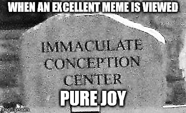 imconcenter | WHEN AN EXCELLENT MEME IS VIEWED PURE JOY | image tagged in imconcenter | made w/ Imgflip meme maker