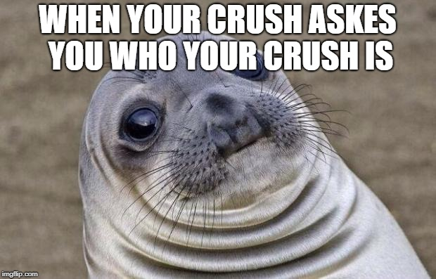 Awkward Moment Sealion Meme | WHEN YOUR CRUSH ASKES YOU WHO YOUR CRUSH IS | image tagged in memes,awkward moment sealion | made w/ Imgflip meme maker