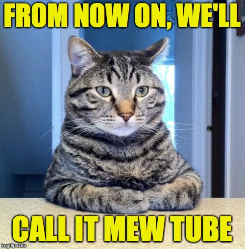 We're takin' over, see?  Nothin' you can do about it, see?  That's right.  Yeah. | FROM NOW ON, WE'LL CALL IT MEW TUBE | image tagged in memes,serious cat,mew tube,gangsta cat | made w/ Imgflip meme maker