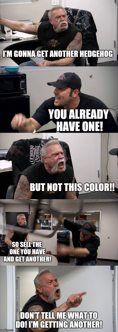 American Chopper Argument Meme | I'M GONNA GET ANOTHER HEDGEHOG YOU ALREADY HAVE ONE! BUT NOT THIS COLOR!! SO SELL THE ONE YOU HAVE AND GET ANOTHER! DON'T TELL ME WHAT TO DO | image tagged in memes,american chopper argument | made w/ Imgflip meme maker