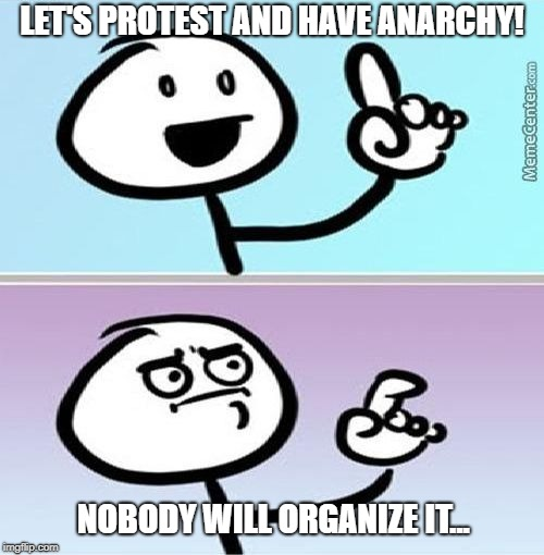 LET'S PROTEST AND HAVE ANARCHY! NOBODY WILL ORGANIZE IT... | image tagged in can't argue with that | made w/ Imgflip meme maker
