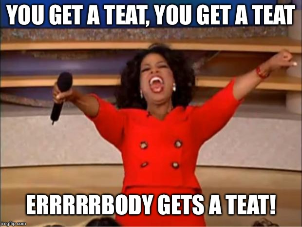 Oprah You Get A Meme | YOU GET A TEAT, YOU GET A TEAT ERRRRRBODY GETS A TEAT! | image tagged in memes,oprah you get a | made w/ Imgflip meme maker