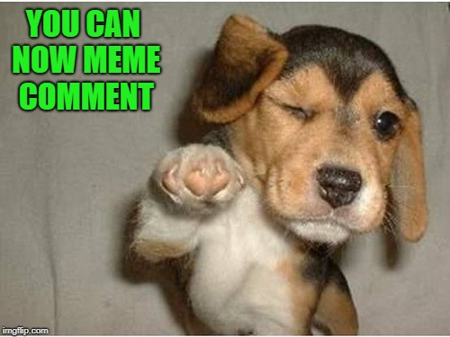 YOU CAN NOW MEME COMMENT | made w/ Imgflip meme maker
