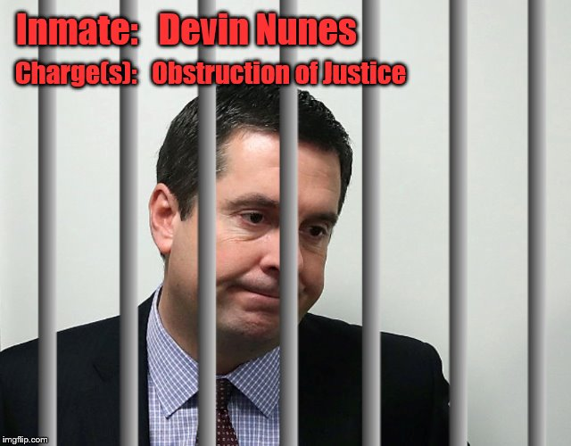 Nunes the Numb Nuts | Inmate:   Devin Nunes Charge(s):   Obstruction of Justice | image tagged in devin nunes,nunes,russian collusion,russian investigation | made w/ Imgflip meme maker
