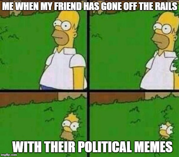 I'll see you around | ME WHEN MY FRIEND HAS GONE OFF THE RAILS WITH THEIR POLITICAL MEMES | image tagged in homer simpson in bush - large,memes,crazy,politics | made w/ Imgflip meme maker