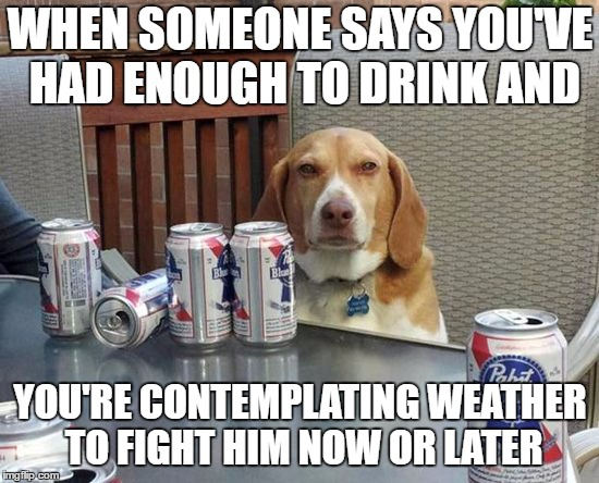 WHEN SOMEONE SAYS YOU'VE HAD ENOUGH TO DRINK AND YOU'RE CONTEMPLATING WEATHER TO FIGHT HIM NOW OR LATER | image tagged in dog beer | made w/ Imgflip meme maker
