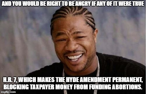 Yo Dawg Heard You Meme | AND YOU WOULD BE RIGHT TO BE ANGRY IF ANY OF IT WERE TRUE H.R. 7, WHICH MAKES THE HYDE AMENDMENT PERMANENT, BLOCKING TAXPAYER MONEY FROM FUN | image tagged in memes,yo dawg heard you | made w/ Imgflip meme maker