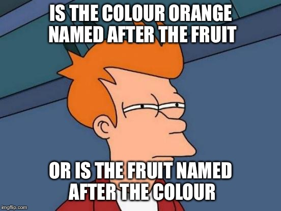 Futurama Fry Meme | IS THE COLOUR ORANGE NAMED AFTER THE FRUIT OR IS THE FRUIT NAMED AFTER THE COLOUR | image tagged in memes,futurama fry | made w/ Imgflip meme maker