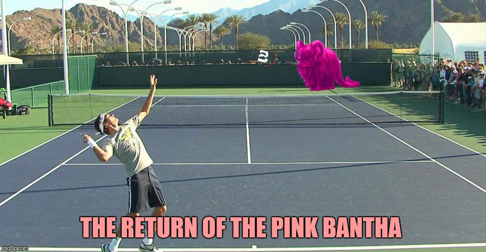 THE RETURN OF THE PINK BANTHA | made w/ Imgflip meme maker