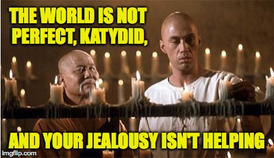 Caine and Master Po | THE WORLD IS NOT PERFECT, KATYDID, AND YOUR JEALOUSY ISN'T HELPING | image tagged in caine and master po | made w/ Imgflip meme maker