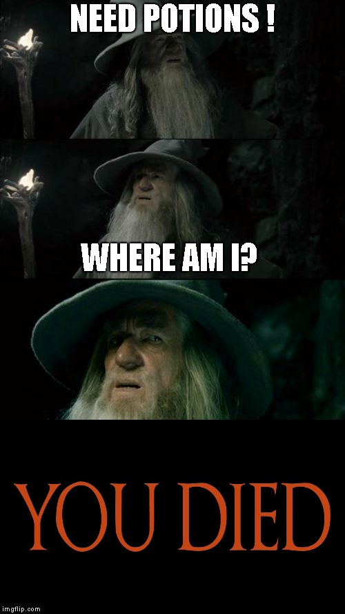 NEED POTIONS ! WHERE AM I? | image tagged in dark souls,memes | made w/ Imgflip meme maker