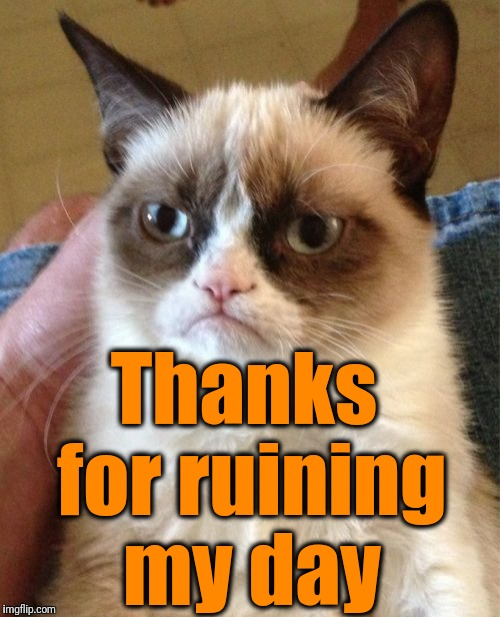 Grumpy Cat Meme | Thanks for ruining my day | image tagged in memes,grumpy cat | made w/ Imgflip meme maker