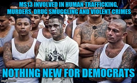 MS13 INVOLVED IN HUMAN TRAFFICKING, MURDERS, DRUG SMUGGLING AND VIOLENT CRIMES NOTHING NEW FOR DEMOCRATS | image tagged in ms13 family pic | made w/ Imgflip meme maker