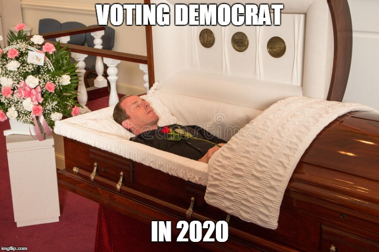Democrat | VOTING DEMOCRAT IN 2020 | image tagged in democrats | made w/ Imgflip meme maker