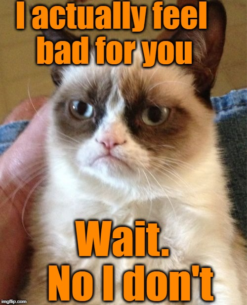 Grumpy Cat Meme | I actually feel bad for you Wait.  No I don't | image tagged in memes,grumpy cat | made w/ Imgflip meme maker