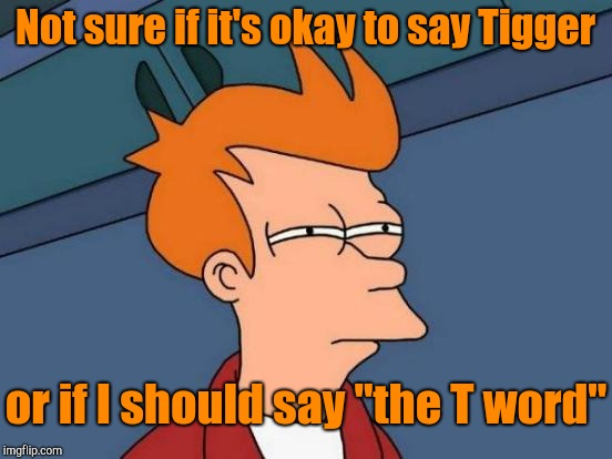 "Futurama Fry Meme | Not sure if it's okay to say Tigger or if I should say ""the T word"" 
