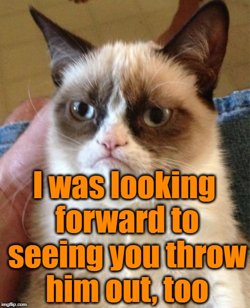 Grumpy Cat Meme | I was looking forward to seeing you throw him out, too | image tagged in memes,grumpy cat | made w/ Imgflip meme maker