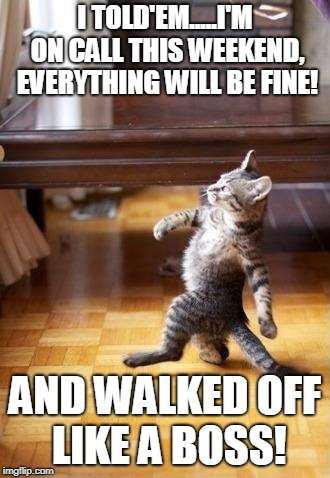 Cool Cat Stroll | I TOLD'EM.....I'M ON CALL THIS WEEKEND, EVERYTHING WILL BE FINE! AND WALKED OFF LIKE A BOSS! | image tagged in memes,cool cat stroll | made w/ Imgflip meme maker