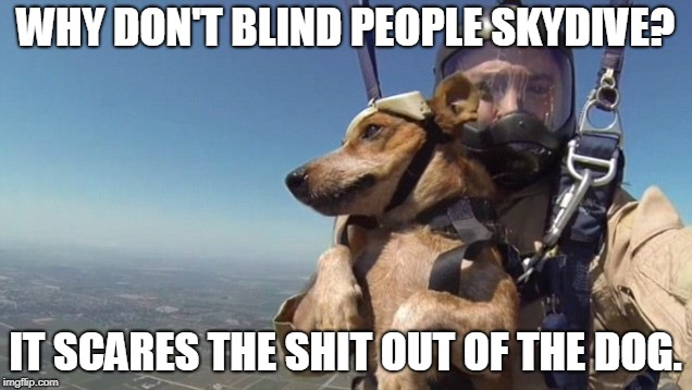 WHY DON'T BLIND PEOPLE SKYDIVE? IT SCARES THE SHIT OUT OF THE DOG. | image tagged in blind skydiver | made w/ Imgflip meme maker