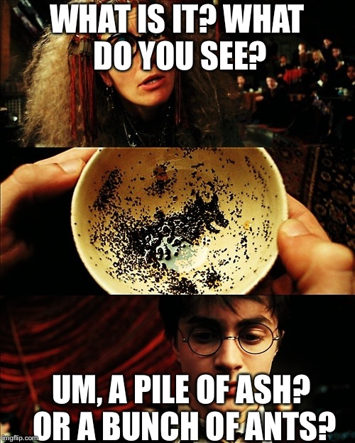 When you try to find a picture in your teacup. | WHAT IS IT? WHAT DO YOU SEE? UM, A PILE OF ASH? OR A BUNCH OF ANTS? | image tagged in harry potter | made w/ Imgflip meme maker