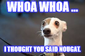 WHOA WHOA ... I THOUGHT YOU SAID NOUGAT. | image tagged in surprise | made w/ Imgflip meme maker