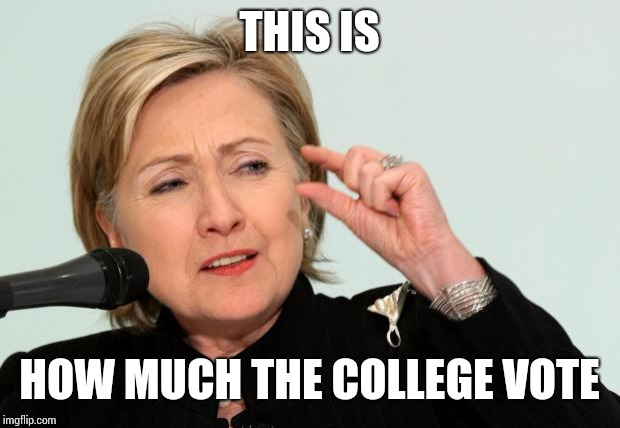 Hillary Clinton Fingers | THIS IS HOW MUCH THE COLLEGE VOTE | image tagged in hillary clinton fingers | made w/ Imgflip meme maker