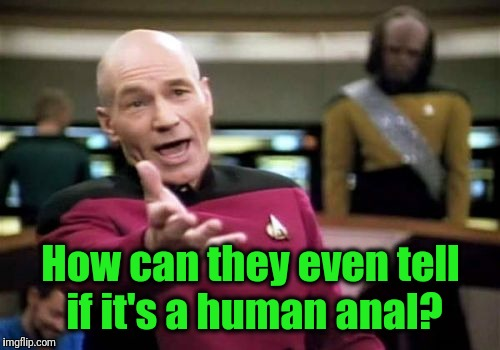 Picard Wtf Meme | How can they even tell if it's a human anal? | image tagged in memes,picard wtf | made w/ Imgflip meme maker