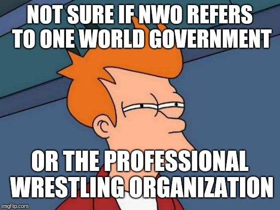 Futurama Fry Meme | NOT SURE IF NWO REFERS TO ONE WORLD GOVERNMENT OR THE PROFESSIONAL WRESTLING ORGANIZATION | image tagged in memes,futurama fry | made w/ Imgflip meme maker