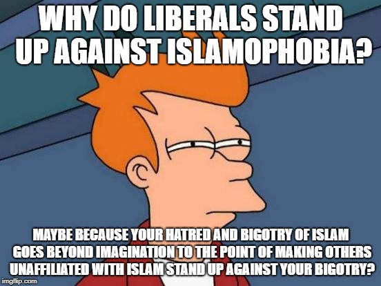 Futurama Fry | WHY DO LIBERALS STAND UP AGAINST ISLAMOPHOBIA? MAYBE BECAUSE YOUR HATRED AND BIGOTRY OF ISLAM GOES BEYOND IMAGINATION TO THE POINT OF MAKING | image tagged in memes,futurama fry,liberals,islamophobia,bigotry,bigot | made w/ Imgflip meme maker