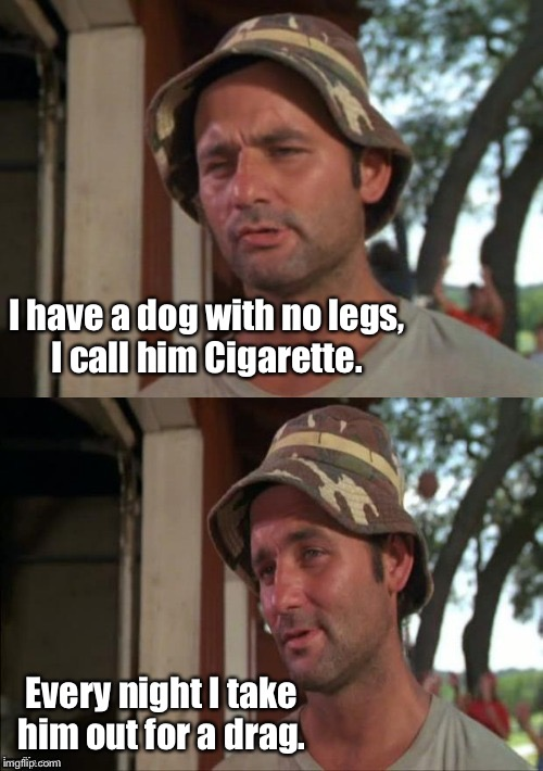 I have a dog with no legs, I call him Cigarette. Every night I take him out for a drag. | image tagged in bill murray bad joke,dog joke,funny meme | made w/ Imgflip meme maker