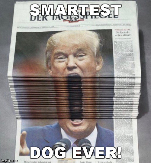 Trump Newspaper | SMARTEST DOG EVER! | image tagged in trump newspaper | made w/ Imgflip meme maker