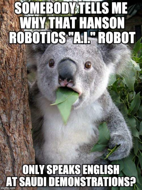 "Surprised Koala Meme | SOMEBODY TELLS ME WHY THAT HANSON ROBOTICS ""A.I."" ROBOT ONLY SPEAKS ENGLISH AT SAUDI DEMONSTRATIONS? 