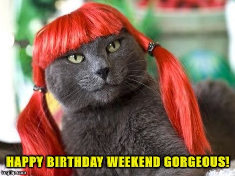 To an awesome friend and memer, Deedsterdoo! <3 | HAPPY BIRTHDAY WEEKEND GORGEOUS! | image tagged in deedsterdoo,happy birthday,friends,imgflip users | made w/ Imgflip meme maker
