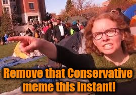 sjw | Remove that Conservative meme this instant! | image tagged in sjw | made w/ Imgflip meme maker