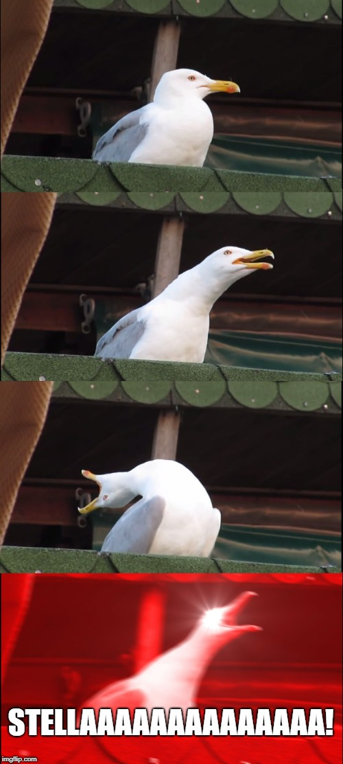 Seagull tries out for roll in a streetcar named desire.  |  STELLAAAAAAAAAAAAAA! | image tagged in memes,inhaling seagull,play,theater | made w/ Imgflip meme maker