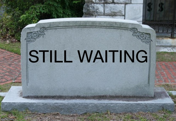 Blank Tombstone | STILL WAITING | image tagged in blank tombstone | made w/ Imgflip meme maker