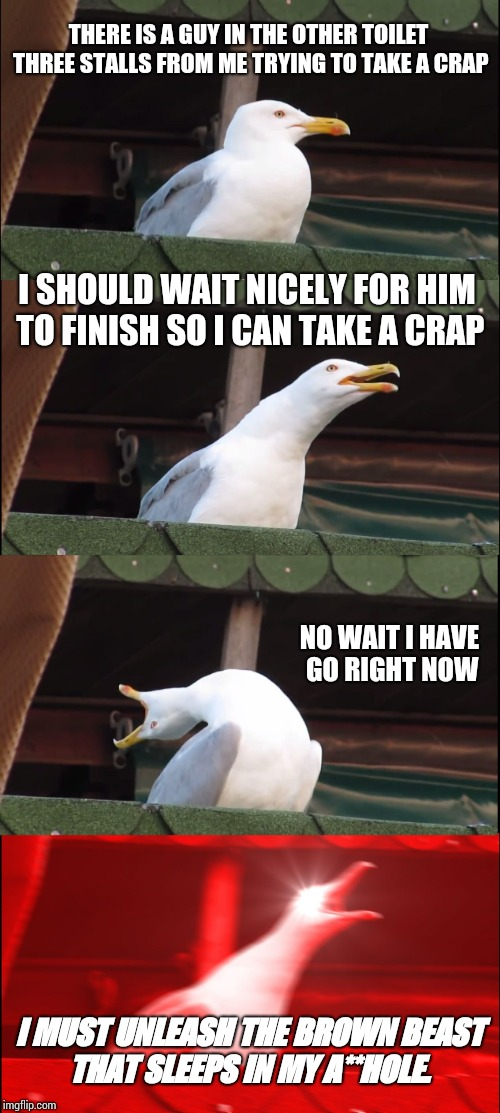 Inhaling Seagull Meme | THERE IS A GUY IN THE OTHER TOILET THREE STALLS FROM ME TRYING TO TAKE A CRAP I SHOULD WAIT NICELY FOR HIM TO FINISH SO I CAN TAKE A CRAP NO | image tagged in memes,inhaling seagull | made w/ Imgflip meme maker