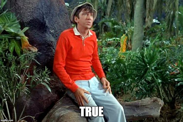 gilligan | TRUE | image tagged in gilligan | made w/ Imgflip meme maker