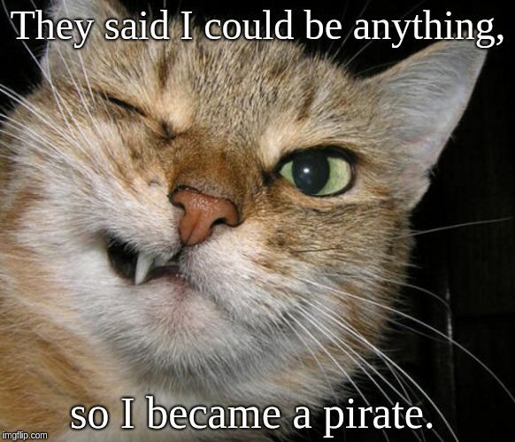 They said I could be anything, so I became a pirate. | image tagged in pirate cat | made w/ Imgflip meme maker