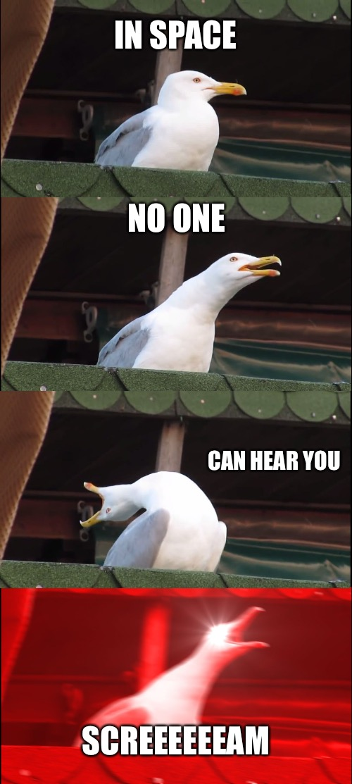 Inhaling Seagull Meme | IN SPACE NO ONE CAN HEAR YOU SCREEEEEEAM | image tagged in memes,inhaling seagull | made w/ Imgflip meme maker