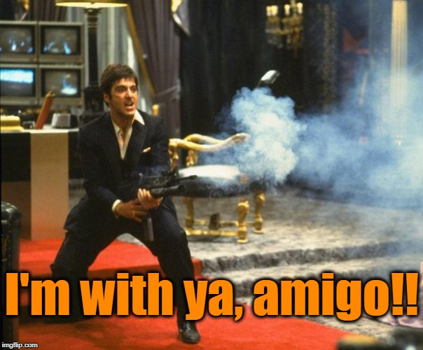 scarface | I'm with ya, amigo!! | image tagged in scarface | made w/ Imgflip meme maker