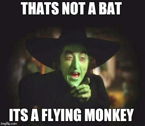 THATS NOT A BAT ITS A FLYING MONKEY | made w/ Imgflip meme maker