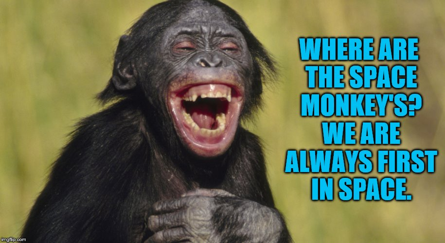 laughing monkey,memes | WHERE ARE THE SPACE MONKEY'S? WE ARE ALWAYS FIRST IN SPACE. | image tagged in laughing monkey memes | made w/ Imgflip meme maker