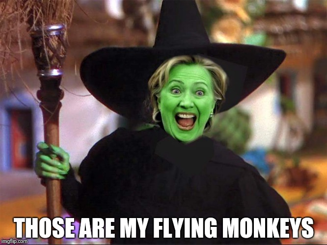 Hillary witch | THOSE ARE MY FLYING MONKEYS | image tagged in hillary witch | made w/ Imgflip meme maker