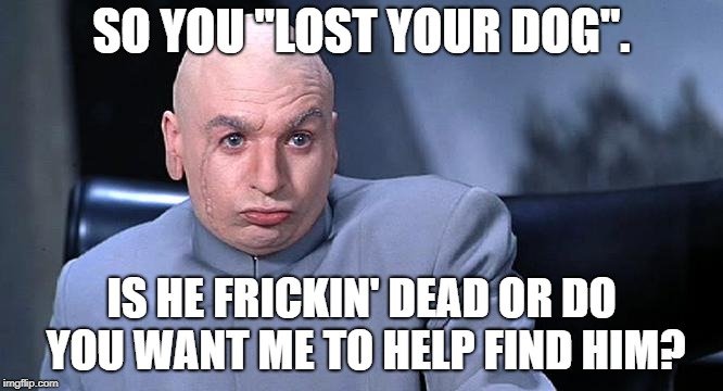 "Lost Your Dog | SO YOU ""LOST YOUR DOG"". IS HE FRICKIN' DEAD OR DO YOU WANT ME TO HELP FIND HIM? 