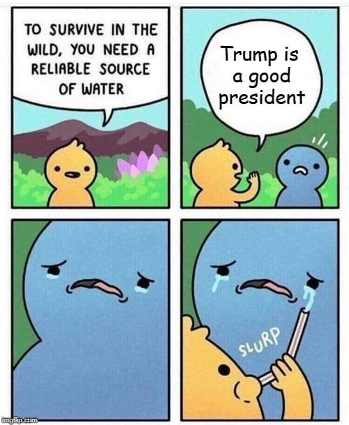 Like it or not... | Trump is a good president | image tagged in survival,liberal tears,president trump,donald trump,memes | made w/ Imgflip meme maker